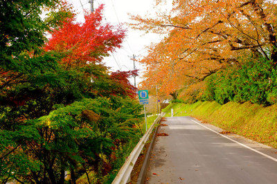 """AUGM<b style=""""background-color:yellow;"""">気仙沼</b>の後、「気楽会の観光案内課「ひとめぐりツアー」」で<b style=""""background-color:yellow;"""">気仙沼</b>を歩く"""