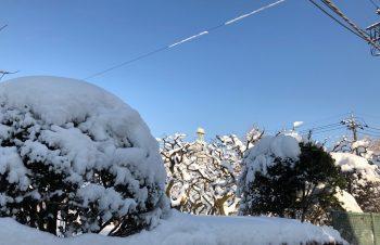 新たな展開を求め、極寒の韓国へ。