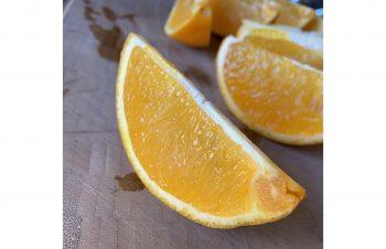 残ったオレンジはスタッフがおいしくいただきました