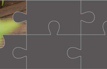 NuAnsより、新製品の画像を少しずつ公開中