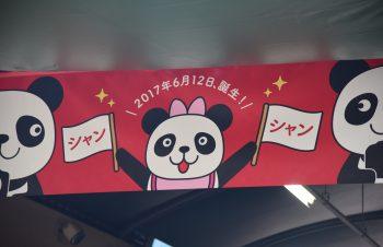 続・パンダ・パンダ・パンダ