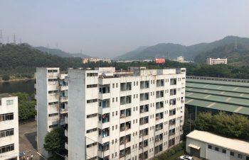 禁煙事情から見る、中国の推進力