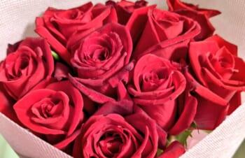 薔薇の花束を渡した翌日に殴られて突然ワイヤレス充電の有用な使い方に気がついた – Bluelounge Owen