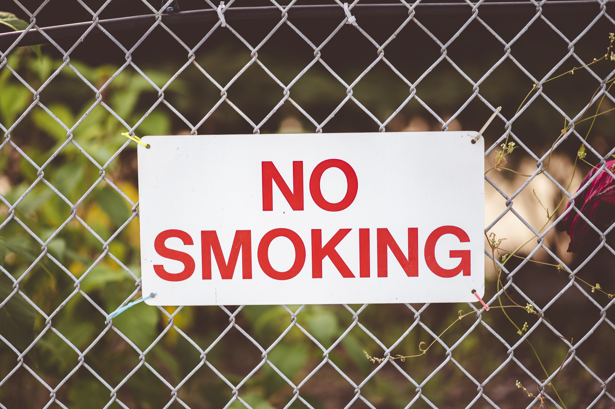 Closeup-focus-shot-of-no-smoking-sign-hanging-by-the-fence.jpg